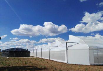 Invernadero Aerodinamico con Sistema de Captacion de Agua